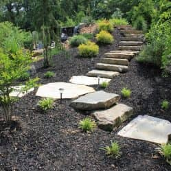 pathway with stairs