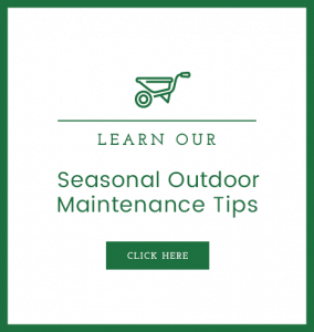 Learn Our Seasonal Outdoor Maintenance Tips