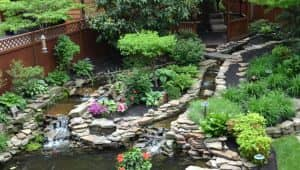 hardscaping pond oasis