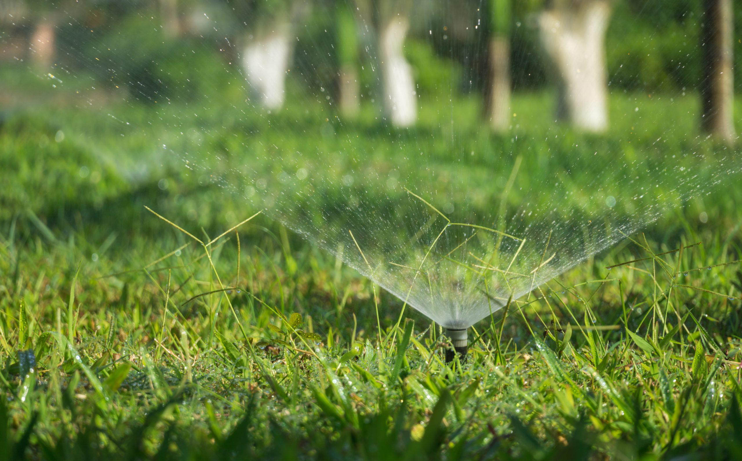 A sprinkler repair success